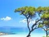 chalkidiki-vakantie-kust-600
