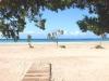 Elafonisi-Kreta-beach-bomen-600