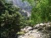 Imbros-kloof-Kreta-groen-600