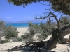 Kreta-Chrissi-eiland-strand-wit-600