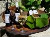 Lefkas-vakantie-Karsanikos-winery-600