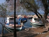Lesbos-skamioudi-haven-griekenland-600
