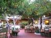 Peloponnesos-taverne-epidaurus-600