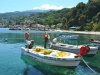 Pilion-Agios-Ioannis-600