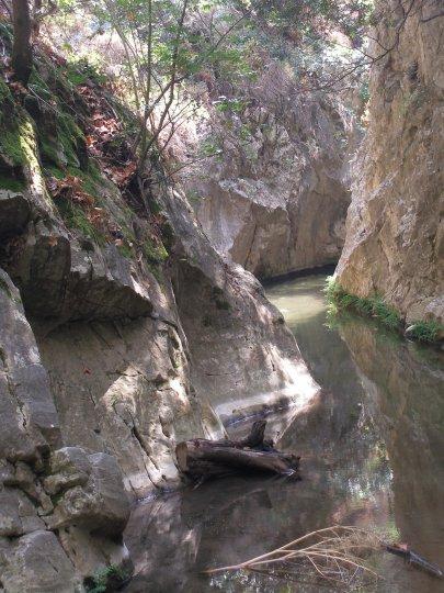 Samos-nachtegaal-vallei-600