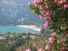 Thassos-vakantie-rododendron-uitzicht-strand-600