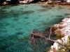 thassos-vakantie-zeewater-griekenland-600