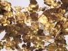 Vergina-Griekenland-Aigai-decoratie-goud-600