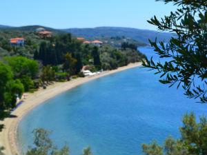 Griekenland flora en fauna informatie