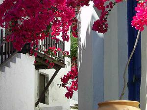 Eilandhoppen Griekenland op de Sporaden