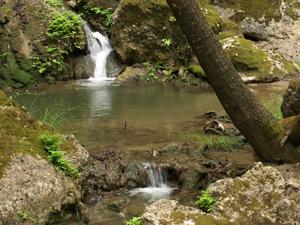 Rhodos de natuurlijke vlindervallei