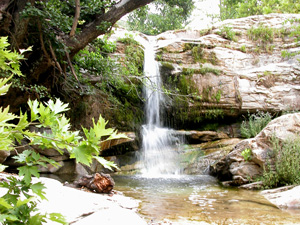 Thassos de mooie groene binnenlanden met watervallen