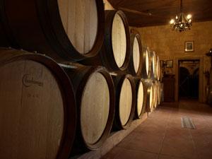 Wijnkelder van een Grieks wijnhuis op Rhodos.