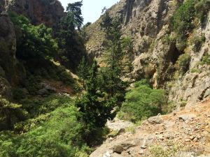 Imbros kloof op Kreta