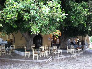 Terras van Neratzia cafe in Kos-Stad