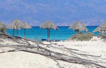 Kreta vakantie Chrissi eiland strand