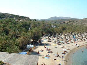 Het palmenstrand Vai op Kreta