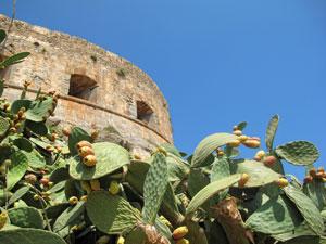 Kreta vakantie Spinalonga excursie