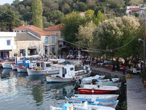 Skala Sykamia haventje met visrestaurants op Lesbos