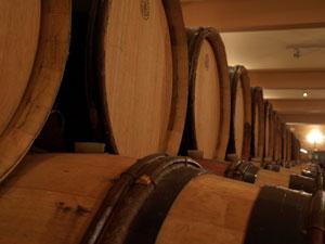 Wijnkelder in Nemea op de Peloponnesos.