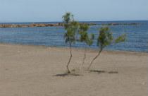 Strand van Monolithos