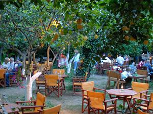 Lemon Garden restaurant Acharavi Corfu