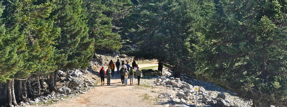 Ainos Kefalonia - National Park berg Ainos - Eiland Kefalonia