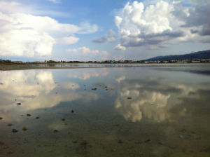Alikes zoutwaterpannen bij Tigaki