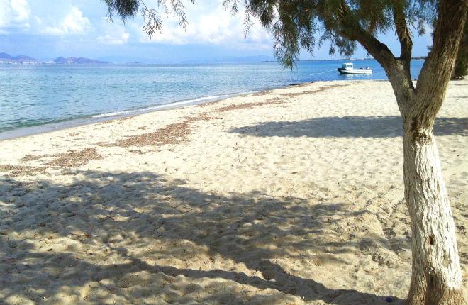 Tigaki vakantie op Kos in Griekenland