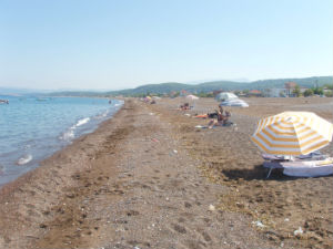 Angali beach bij Agia Anna Evia