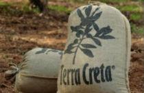 Beste olijfolie van Griekenland uit Kreta