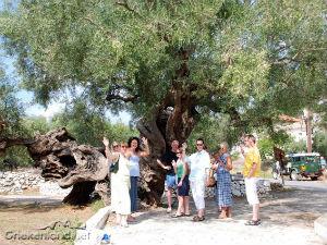 Excursie met Nefis Travel op Zakynthos