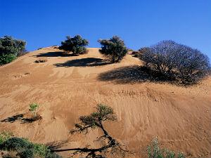 Zandduinen bij Gomati beach Limnos