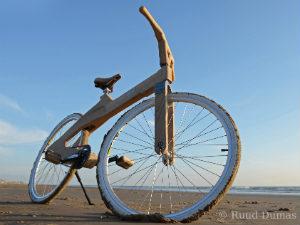 Houten Coco Mat fiets van Paul
