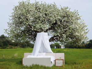 Coco Mat bed onder boom Griekenland