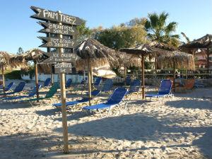 Palm Tree beach club Alykes