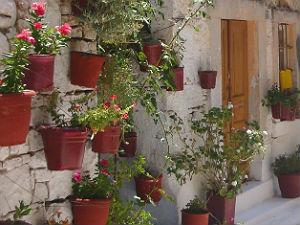 Chios mastiek dorp Mesta