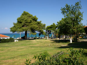 Hanioti Halkidiki groene zone