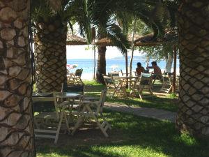 Palmen en terras langs het strand van Toroni