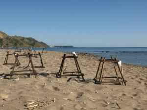 Dafni beach schildpaddennesten