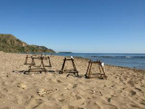 Dafni beach bij mooiste stranden op Zakynthos