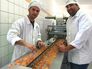 Kumquat corfu fabriek mavromatis