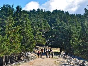 Griekse eilanden met de hoogste bergen Ainos op Kefalonia