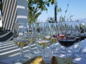 Wijn uit Santorini Sigalas winery