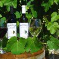 Wijn en likeur uit Lefkas