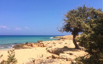 Gavdos stranden tijdens vakantie