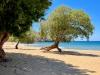 Patmos-Psili-Ammos-beach-600